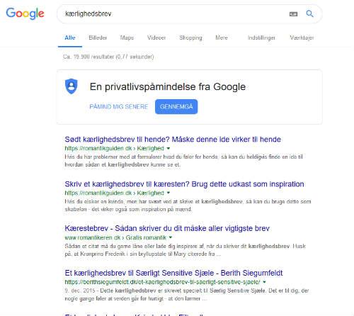 Google søgning efter niche søgeord